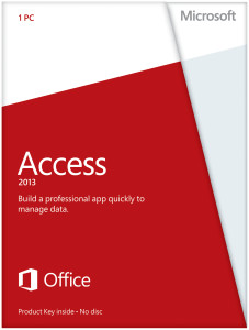 Access (1 User 1 PC)