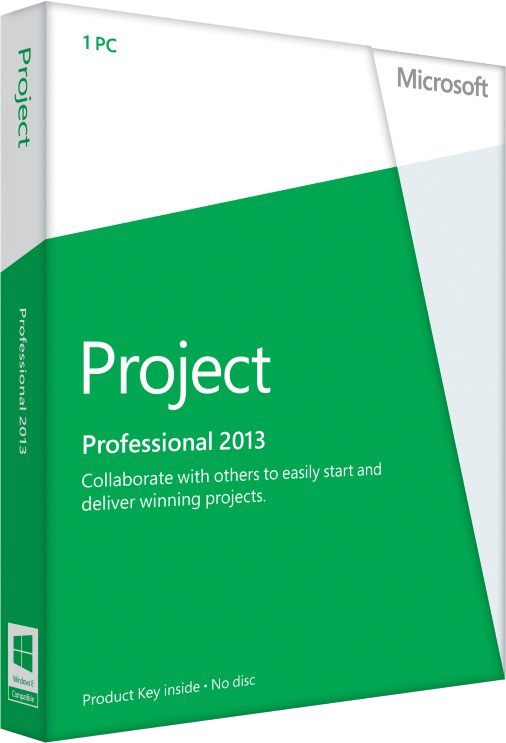 Project Professional 2013 (1 User 1 PC)